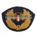 Kenyan Arms Badge