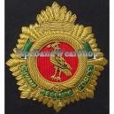 American Navy Badge